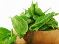 绿叶蔬菜有助保持大脑敏锐