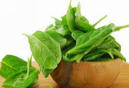 菠菜等绿叶蔬菜有助保持大脑敏锐